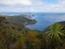 Cape Brett views