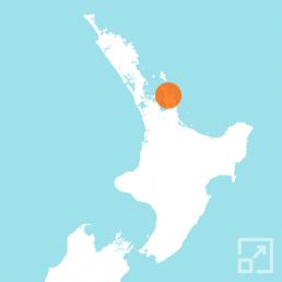 Coromandel Region
