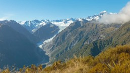 Fox Glacier view