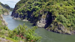Manawatu Gorge - Photo: Rafael Ben Ari/Bigstock.com