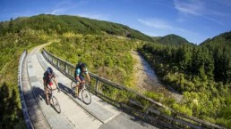 Rimutaka Cycle Trail - Photo: wellingtonnz.com