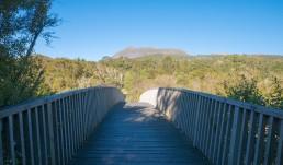 Tarawera Falls Track