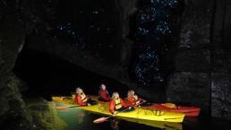 Waimarino glow worm kayaking