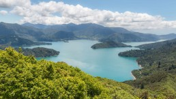 Marlborough Sounds - Photo: Patjo/Bigstock.com
