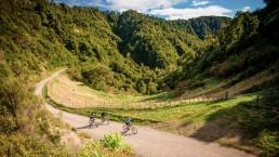 Motu Trails - Photo: motutrails.co.nz
