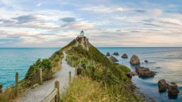 Nugget Point - Photo: Urmas83/Bigstock.com