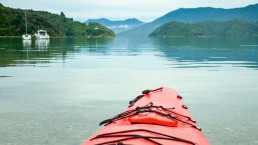 Marlborough Sounds kayaking - Photo: naumoid/Bigstock.com