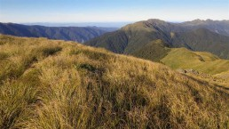 Tararua Range - Photo: doc.govt.nz