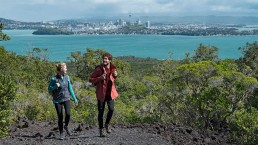 Rangitoto Island - Photo: Tourism NZ / Fraser Clements