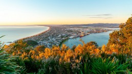 Tauranga - Photo: Bigstock.com / Brians Photos